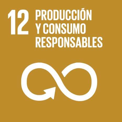 12_sustainable-consumption-production