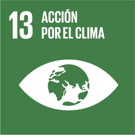 13_climate-action