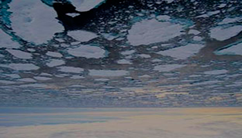 La falta de rigor científico en la información vertida en los artículos sobre cambio climático, dificulta la concienciación de la sociedad