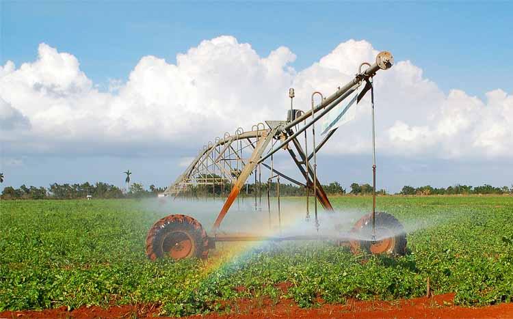 qué sectores consumen más agua