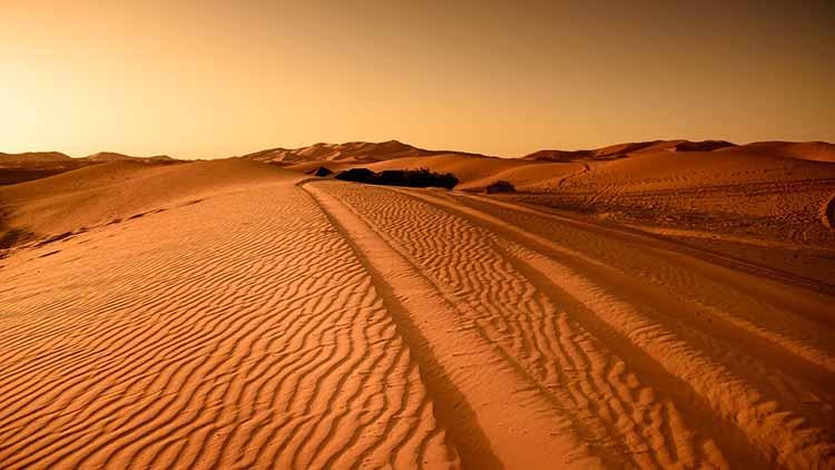 Desertización vs. Desertificación