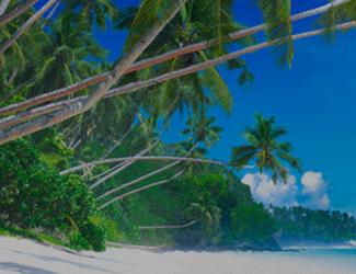 El agua es un personaje muy popular en música. En este artículo hacemos un análisis de su papel en la música del Caribe