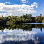 Ríos de Brasil: Amazonas