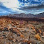 Las cañadas del Teide en la isla de Tenerife, Islas Canarias, está considerado como uno de los 12Tesoros deEspaña desde el año 2007.