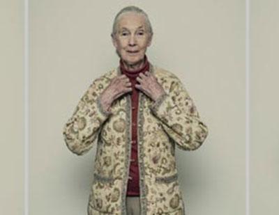 Jane Goodall, vida dedicada al estudio de chimpancés