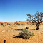 Países con escasez de agua según world resources institute
