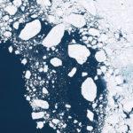 El ártico en peligro