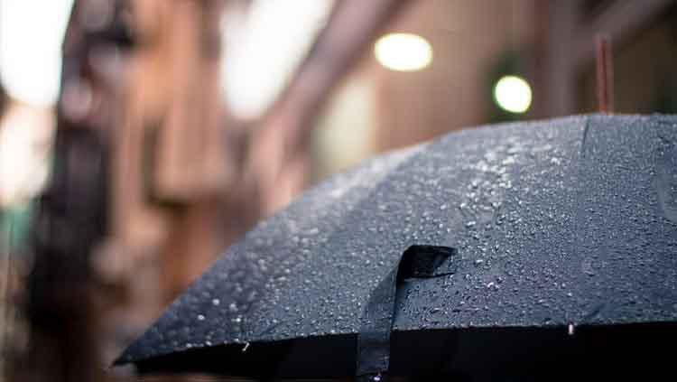paraguas y sombrilla