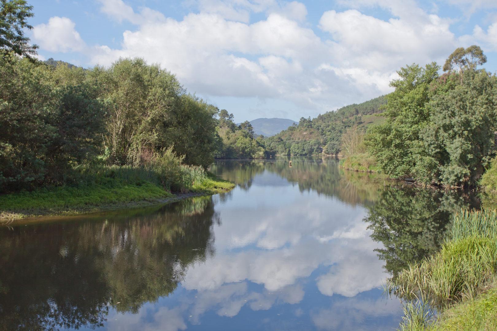 Río Miño   Fundación Aquae