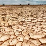 Impacto de la sequía en la agricultura