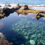 La Reserva Marina de la Isla de Alborán, es una reserva declarada en aguas en torno a dicha isla, se encuentra situada en el mar de Alborán.
