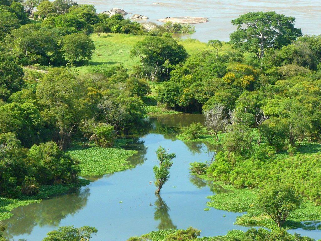 El río Orinoco es el tercer río más caudaloso del mundo y uno de los más importantes de América del Sur. Discurre por Venezuela mayormente.