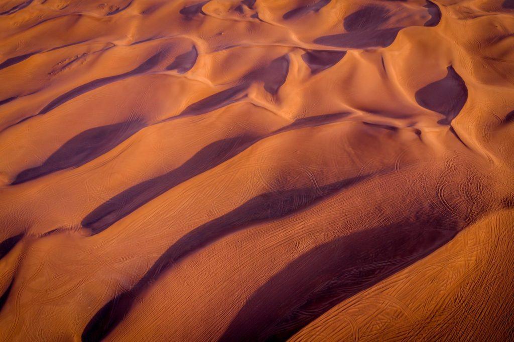 desertificación y pérdida de vegetación