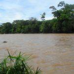 Es un río Caquetá nace en el Páramo de Peñas Blancas (Colombia) y desemboca en el río Amazonas (Brasil) donde se llama río Japurá.