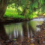 qué es un manantial, agua de manantial y tipos de manantial