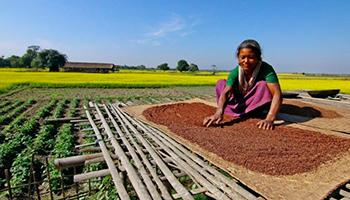 La inversión en acceso al agua potable contribuye a reducir los niveles de desnutrición en países en desarrollo.