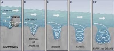fundacion_aquae-consejos_del_agua-mamitas_gigantes