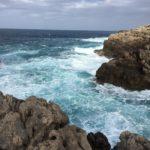 El Archipiélago de Cabrera, Baleares, constituye el mejor exponente de ecosistemas insulares no alterados del Mediterráneo español.