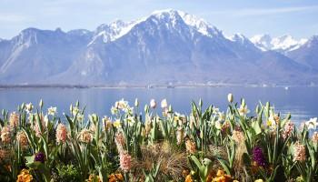 La literatura utiliza los privilegiados entornos donde se forman los lagos como fondo y protagonista. Descubre los lagos más literario