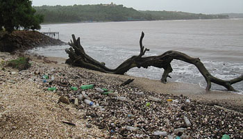 La Cumbre Mundial del Océano persigue un sueño que deberíamos tener todos: acabar con los residuos plásticos de las aguas de nuestros mares