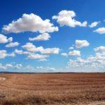 El 18 de junio es el Día Mundial de Lucha contra la desertificación y la sequía. Esta degradación de la tierra es causa de la migración.