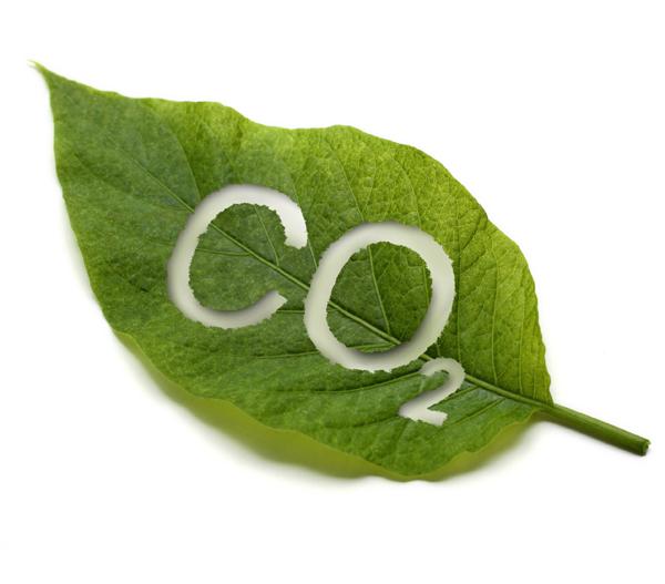 Obtenemos el Sello de Registro de Huella de Carbono 2016