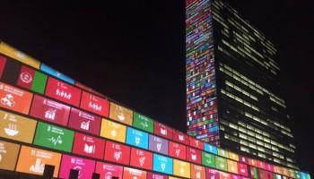emprendedores sociales ODS - ODS 4 Educación; ODS 5; ODS 9 Infraestructuras; ODS 12 Producción responsable; ODS 14 Océanos; ODS 15 Medio Ambiente ODS 3 Salud