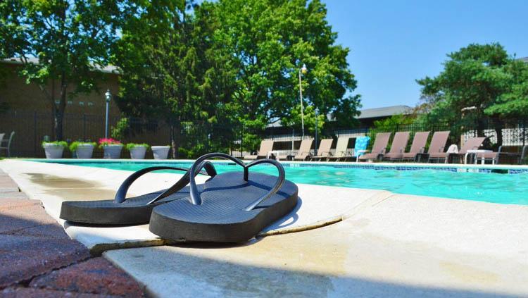 Utilizar placas solares o convertir tu piscina en un estanque son algunas alternativas para mantener el agua de la piscina durante todo el año