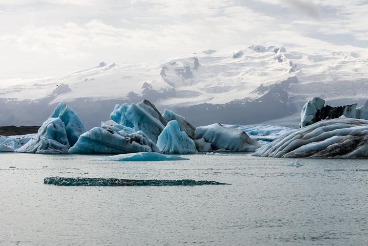 Luchar contra el cambio climático en nuestro día a día