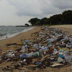 cómo afectan los microplasticos del mar a la salud