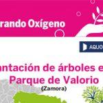 Sembrando Oxígeno en el Parque de Valorio en Zamora
