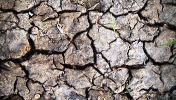 Seguros agrarios basados en el Índice de Sequía.