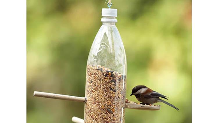 Comedero para pájaros