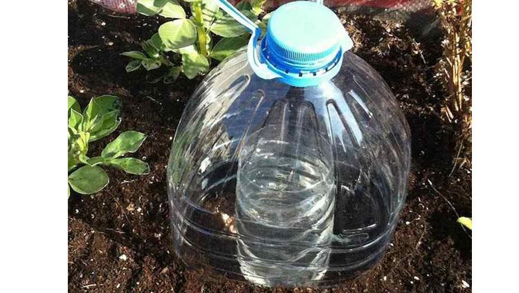 Goteo solar con botellas de plástico, entre las manualidades con botellas de plástico que puedes hacer