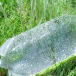 reutilizar botellas plástico