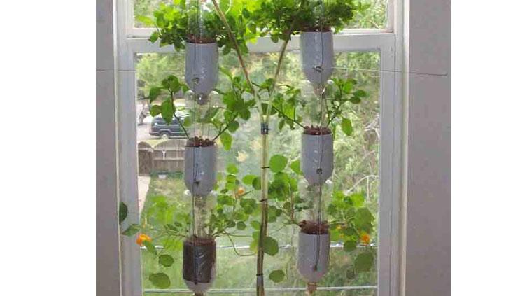 Reutilizar plastico para crear un jardín hidropónico para ventanas urbanas