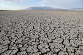 Esta tesis doctoral plantea una gestión eficiente para los problemas de sequía y escasez de agua que sufren cada vez más comunidades