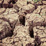Dos inventos que absorven el agua de la atmostfera pueden ayudar en zonas de tierras secas o afectadas por la desertización.