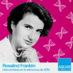 Rosalind Fraklin fue olvidada por sus estudios a la estructura del ADN, pero el paso del tiempo ha situado a la científica donde merece.
