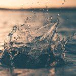 El estrés hídrico y la crisis del agua