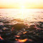 cómo afecta el cambio clmático a la pesca - que efectos produce el cambio climatico en los ecosistemas marinos