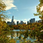 Un nuevo estudio demuestra que una cantidad adecuada de cobertura arbórea puede tener consecuencias como mejor salud y menos calor.