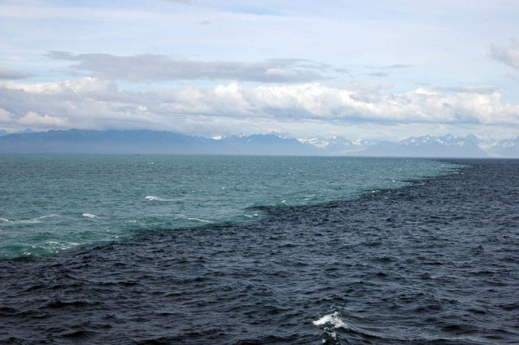 el atlantico y el pacífico son dos mares que parece que no se mezclan pero en realidad sí lo hacen
