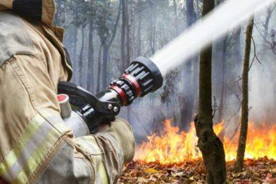 Oriol Vilalta advierte de la necesaria urgencia por tomar medidas para la prevención de incendios forestales