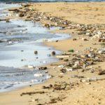 desechos plásticos sobre todo