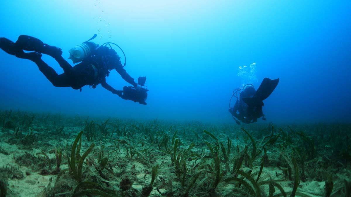 Manu San Féliz, riqueza marina