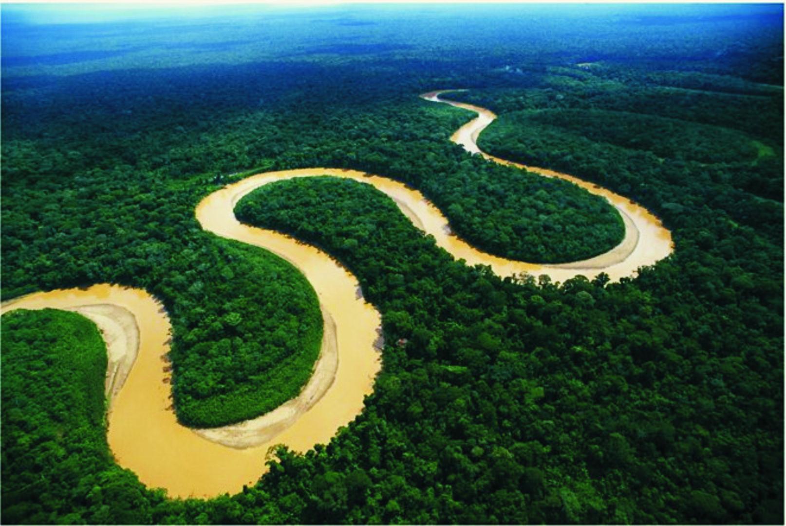 Lo que debes saber sobre el río amazonas | Fundación Aquae