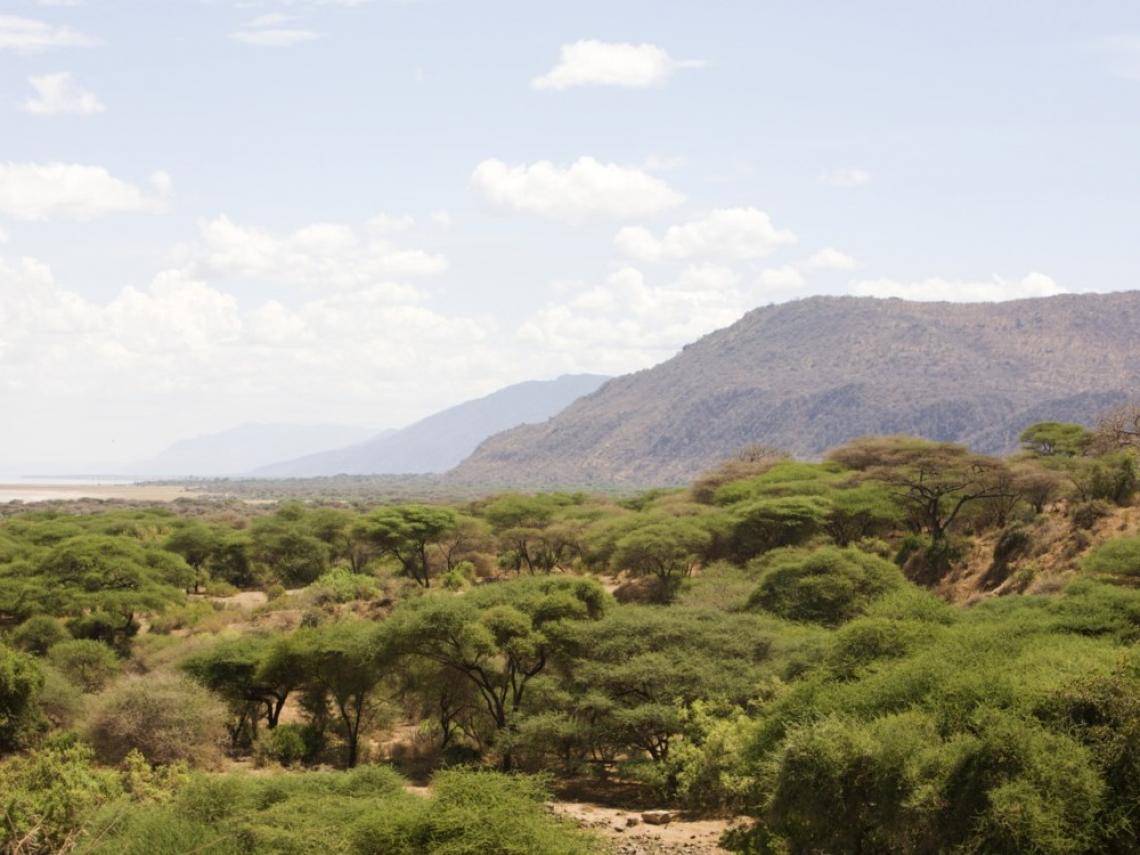 áreas y ecosistemas amenazados