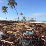 plásticos de un solo uso prohibidos en la UE