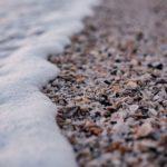 La acidificación del océano podría causar una extinción masiva